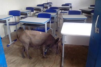 Visita Esc. Eduardo (Sala aula).jpg