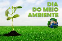 Dia Mundial do Meio ambiente, essa data é sua